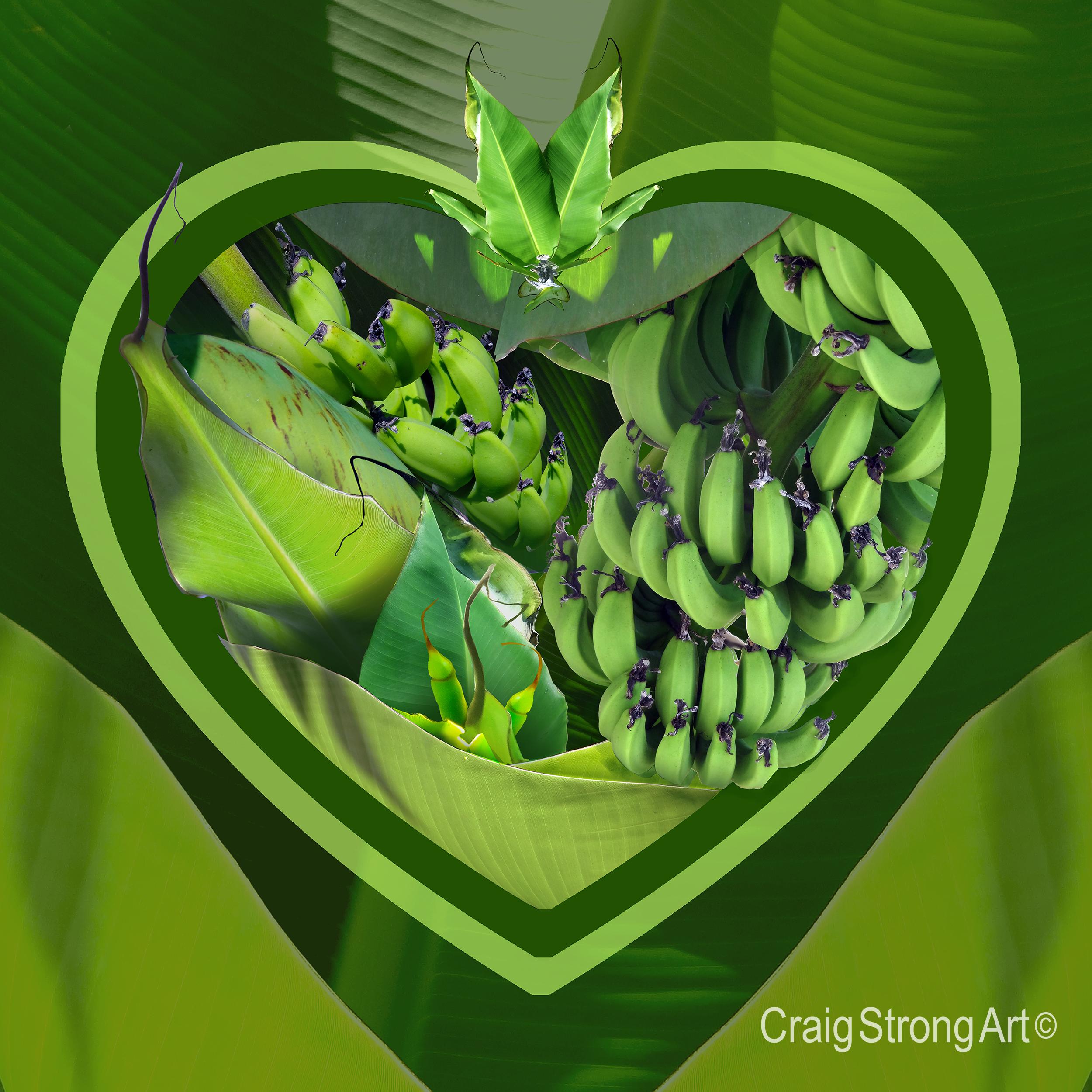 Corazón plantanos verde